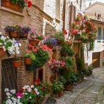Visite Spello, uma das cidades mais encantadoras daItália