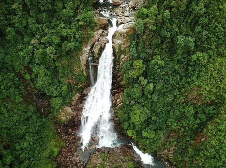 Parque Ecológico Perequê em Cubatão: cachoeiras e natureza perto de SP