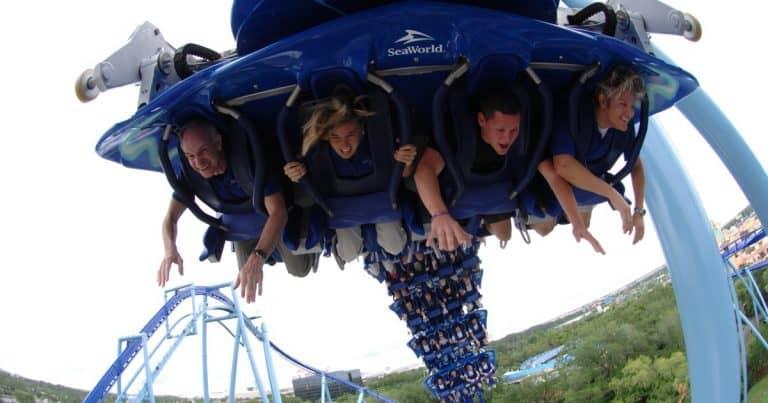 Guia SeaWorld Orlando: conheça as atrações e monte seu roteiro no parque
