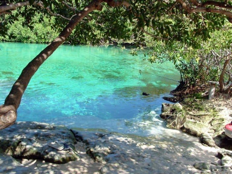 Quer mergulhar nas águas transparentes da Riviera Maia? Então, conheça o Casa Cenote no México