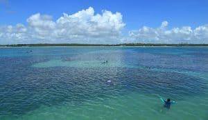 Caribe brasileiro? Conheça as piscinas naturais do Seixas, um paraíso em João Pessoa