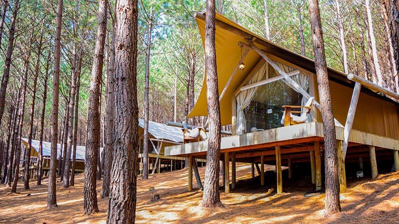 Tedesco Eco Park oferece aventura e imersão na natureza da Serra Gaúcha