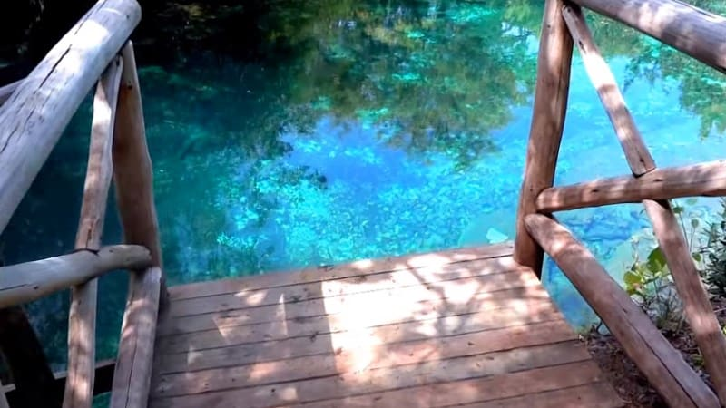 Laguna Bávaro: conheça esse refúgio selvagem em Punta Cana