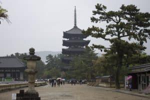Apaixone-se por Nara, no Japão: a cidade dos templos budistas e cervos que vivem livres em um parque