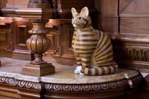 Museu dos Gatos em Amsterdã é um passeio interessante para quem ama os felinos