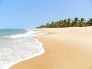 Praia do Gunga, em Alagoas, é uma das mais bonitas do Brasil