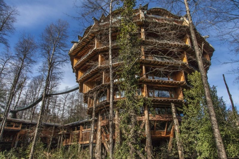 Casa na árvore? Este hotel no coração da Patagônia Chilena é um verdadeiro sonho