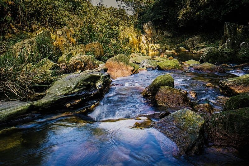Circuito de Cachoeiras de Paranapiacaba, SP, é ideal para quem gosta de trilha