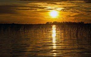 A Argentina também tem pantanal! Conheça o Esteros del Iberá