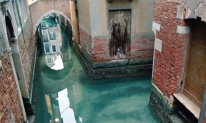 Canais de Veneza ficam cristalinos sem o turismo massivo