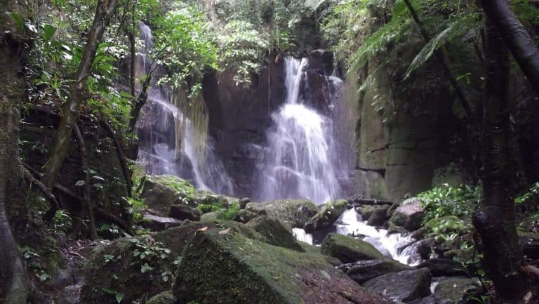 Conheça Tapiraí, destino paulista com cachoeiras incríveis em meio à Mata Atlântica