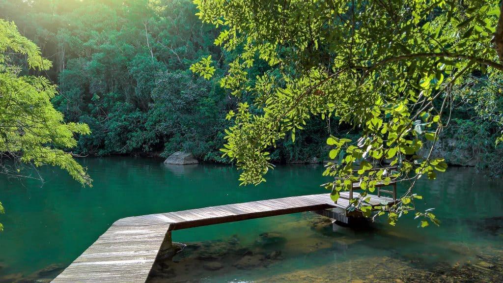 20 lugares na Serra da Cantareira para curtir no final de semana