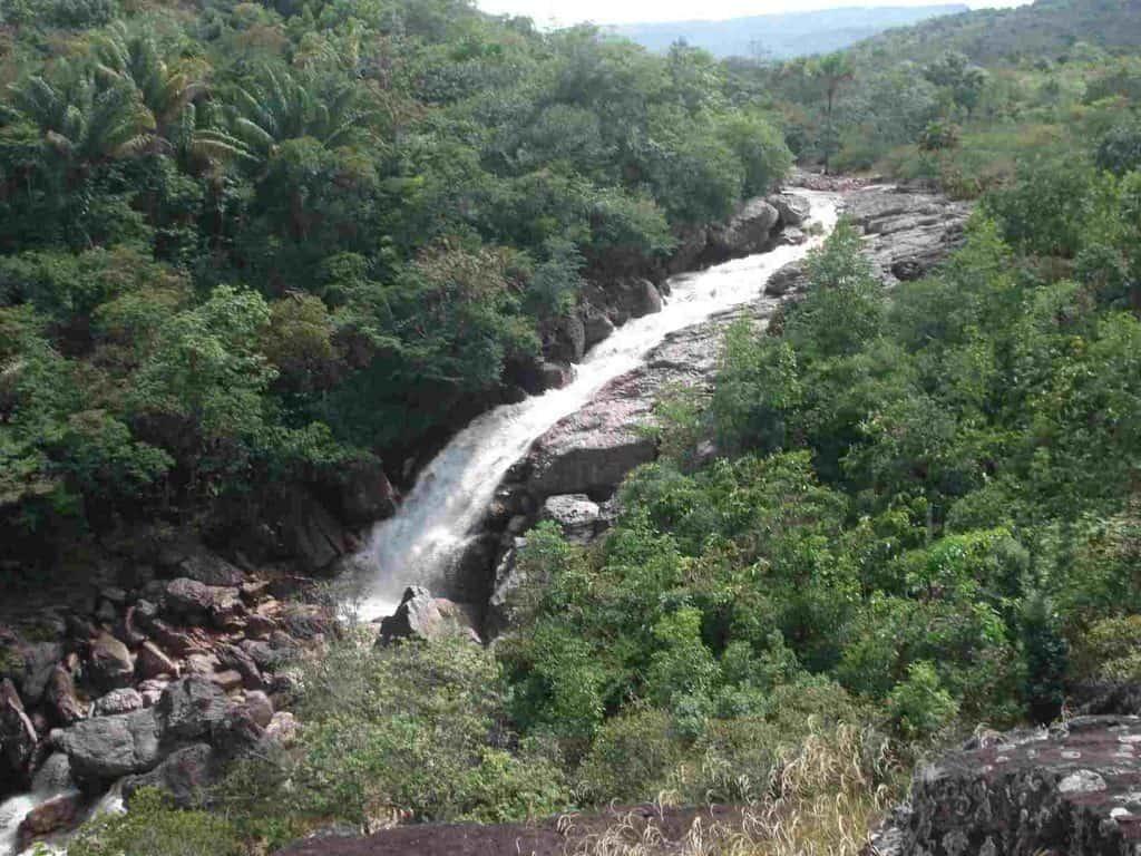 Experiência cultural em Roraima: descubra as riquezas do interior do Estado