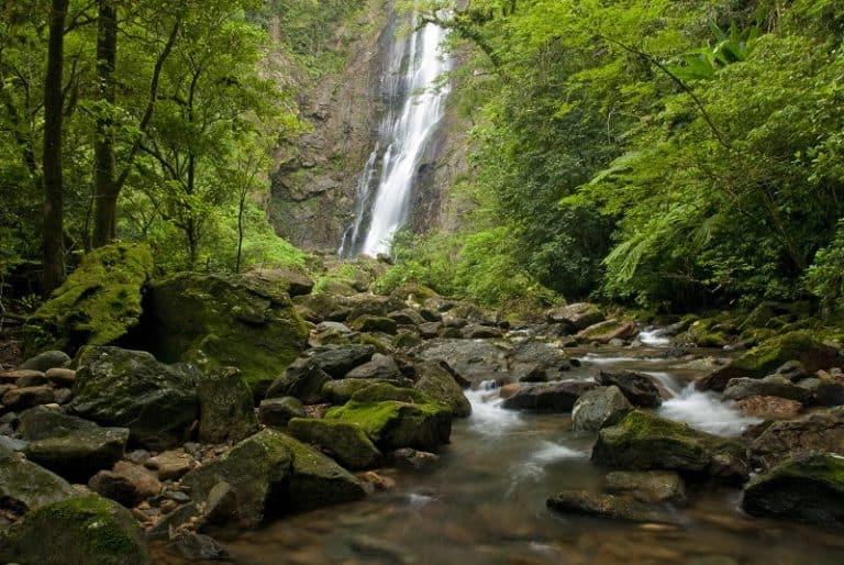 Reserva Natural Salto Morato no litoral do Paraná, reabre para o público neste final de semana