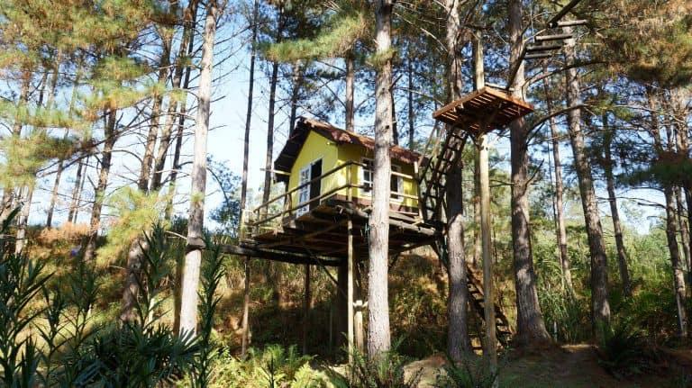 Vinícola em São Roque tem casa na árvore, lazer e enoturismo