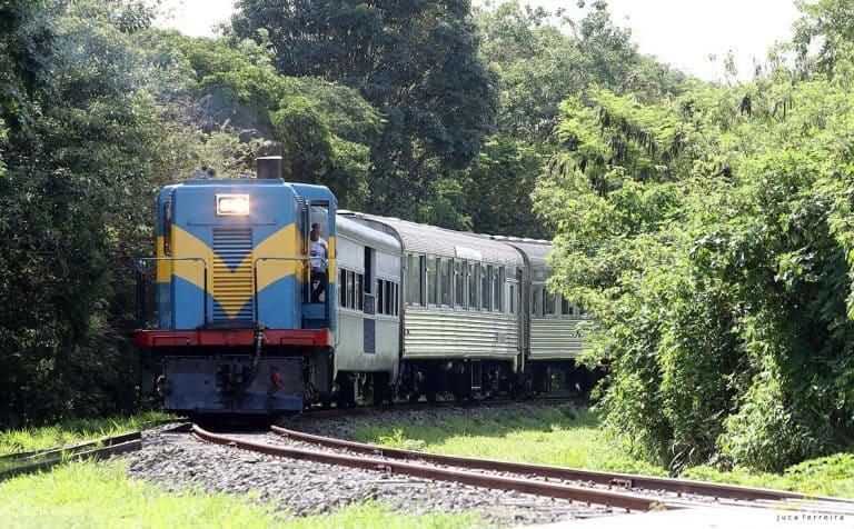 Novo trem turístico no interior de São Paulo é petfriendly e acessível