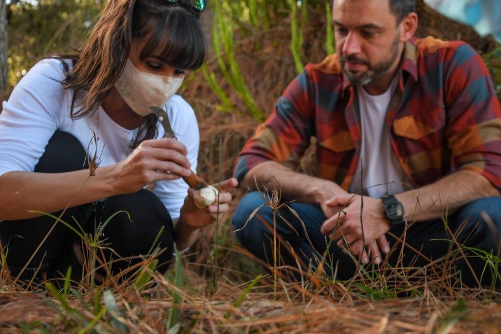 Caçar cogumelos para o jantar é experiência diferente em Cambará do Sul