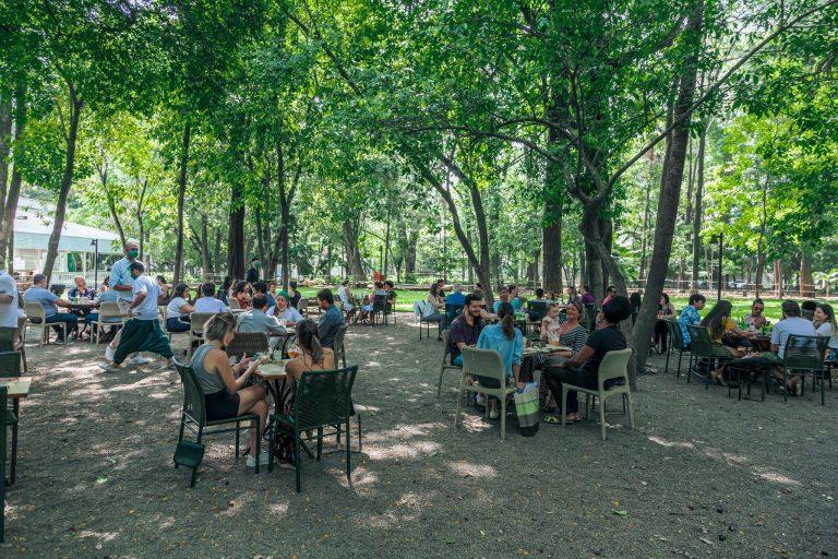 Restaurante Capim Santo – alta gastronomia ao ar livre em SP