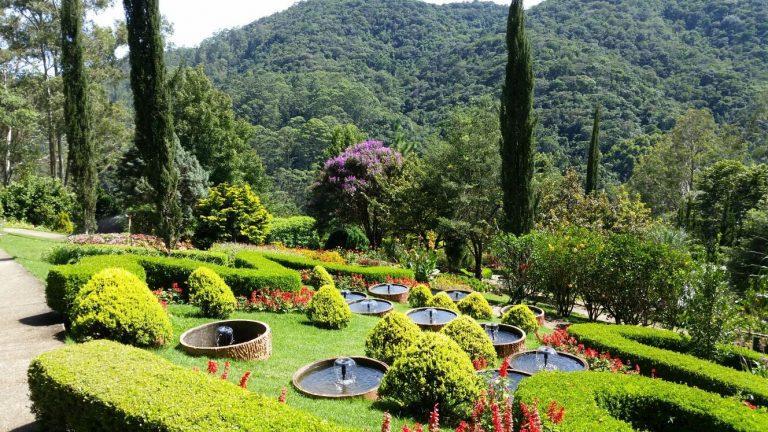 Encante-se com a beleza do Jardim dos Pinhais, no interior deSP