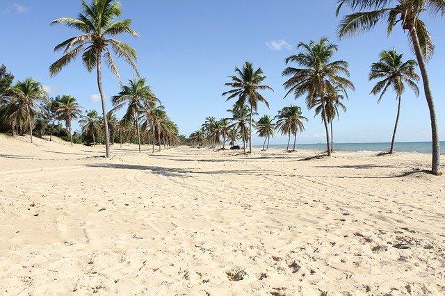 Praia em Fortaleza / Foto: Pixabay