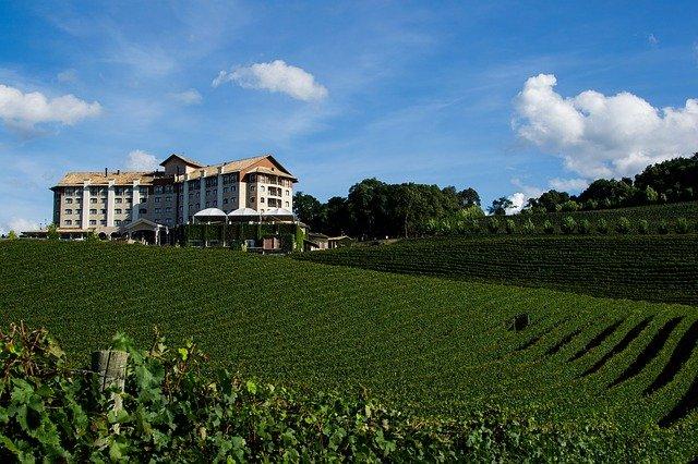 Guia de Bento Gonçalves: fique por dentro de todas as dicas para visitar a capital do vinho no Brasil
