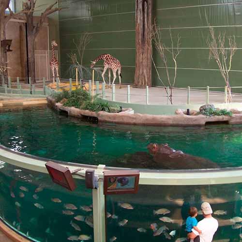 Zoológico de Calgary