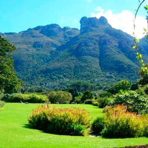 Jardim Kirstenbosch