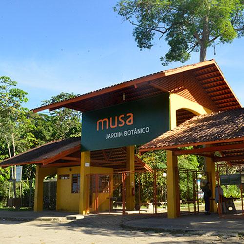 MUSA (Jardim Botânico)
