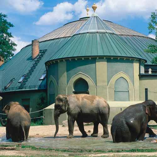 Zoológico Tierpark Hellabrunn