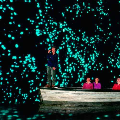 Tour Glow Worm