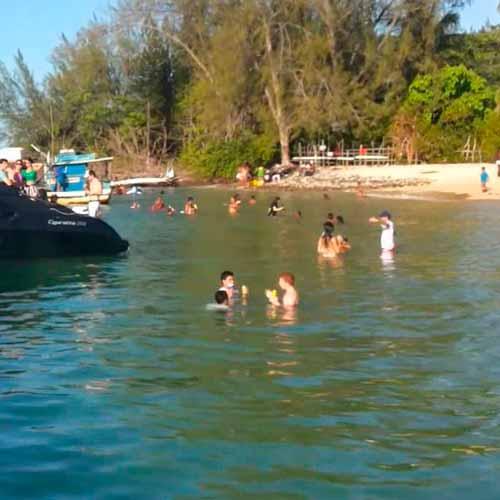 Passeio de catamarã até a Ilha de Santo Aleixo e Praia de Carneiros