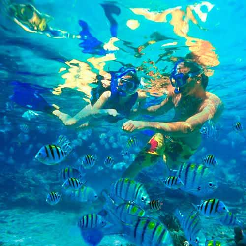 Snorkel em Aruba