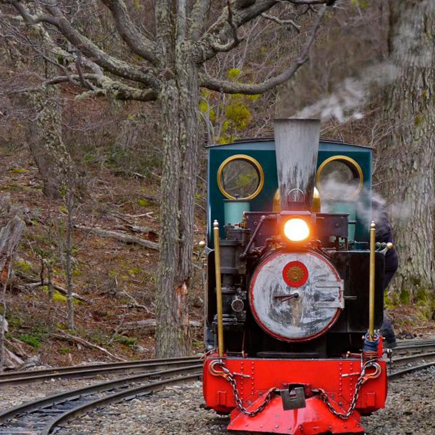 Parque Terra do Fogo + Trem do Fim do Mundo